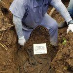 Exhumacion en terreno de los Rosenthal