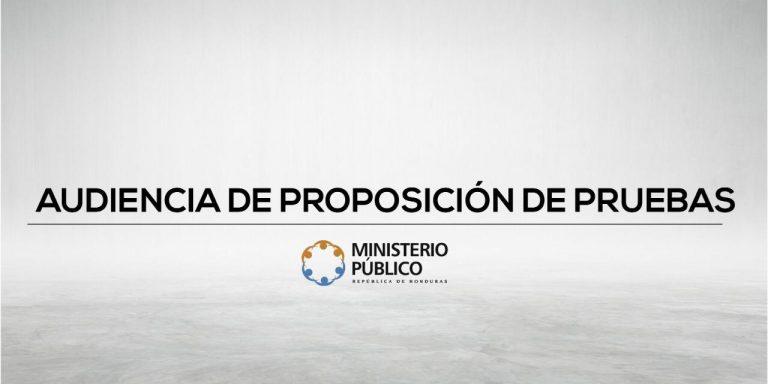 AUDIENCIA DE PROPOSICIÓN DE PRUEBAS OFICIAL