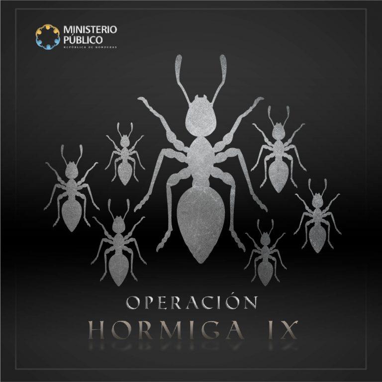 ARTE OPERACIÓN HORMIGA IX