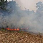 incendio forestal comayagua